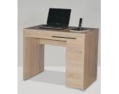 Laptop-Tisch CL 100